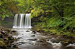 Sgwd yr Eira Waterfall, Brecon Beacons National Park, Wales Stock Photo - Premium Rights-Managed, Artist: JW, Code: 700-03654438