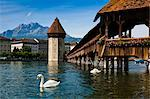 Chapel Bridge and Wasserturm, Lucerne, Switzerland Stock Photo - Premium Rights-Managed, Artist: R. Ian Lloyd, Code: 700-03654580