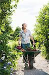 Woman with wheelbarrow Stock Photo - Premium Royalty-Free, Artist: Aflo Relax, Code: 698-03657757