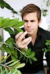 Man looking at his plant Stock Photo - Premium Royalty-Free, Artist: Aflo Relax, Code: 698-03658186