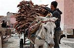 Leather Tannery, Marrakesh, Morocco Stock Photo - Premium Rights-Managed, Artist: Mike Randolph, Code: 700-03662566