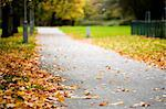 Fallen autumn leaves on path Stock Photo - Premium Royalty-Free, Artist: Sheltered Images, Code: 698-03671007