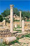 Leptis Magna, UNESCO World Heritage Site, Tripolitania, Libya, North Africa, Africa Stock Photo - Premium Rights-Managed, Artist: Robert Harding Images, Code: 841-03673456