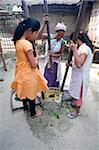 Assamese tribal village women, mother and daughters, crushing herb leaves in domestic stone mill, Majuli Island, Assam, India, Asia Stock Photo - Premium Rights-Managed, Artist: Robert Harding Images, Code: 841-03675453
