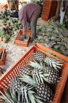 Pineapple production, Togo, West Africa, Africa Stock Photo - Premium Rights-Managed, Artist: Robert Harding Images, Code: 841-03675656
