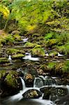 Stream, Snowdonia National Park, Wales Stock Photo - Premium Rights-Managed, Artist: JW, Code: 700-03682153