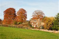 Old Farmhouse Surrounded by Trees in Autumn, Cotswolds, Gloucestershire, England Stock Photo - Premium Rights-Managednull, Code: 700-03682439
