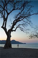 Woman Walking on Beach, Playa de Matapalo, Guanacaste, Costa Rica Stock Photo - Premium Royalty-Freenull, Code: 600-03685849