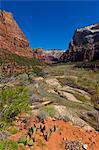 River Running Through Valley, Zion National Park, Utah, USA