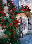 Wooden gateway surrounded by roses,Flavigny sur Ozerain Stock Photo - Premium Rights-Managed, Artist: AWL Images, Code: 862-03711225