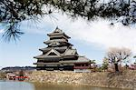 Matsumoto Castle,moat and spring cherry tree blossom with pine tree frame