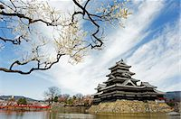 Matsumoto Castle and moat spring cherry tree blossom Stock Photo - Premium Rights-Managednull, Code: 862-03712494