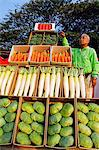 Japan,Honshu Island,Tokyo. Agricultural Festival - vendor of vegetable stand. Stock Photo - Premium Rights-Managed, Artist: AWL Images, Code: 862-03712530