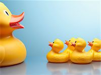 Mother rubber duck and several rubber ducklings Stock Photo - Premium Royalty-Freenull, Code: 635-03716315