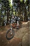 Man Mountain Biking on Mount Seymour, Mount Seymour Provincial Park, North Vancouver, British Columbia, Canada Stock Photo - Premium Royalty-Free, Artist: Sarah Murray, Code: 600-03719414