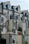 Back of terrace houses and chimneys, Wells Rise, near Primrose Hill, London, NW1, England Stock Photo - Premium Rights-Managed, Artist: Arcaid, Code: 845-03721227