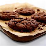 Chocolate Cookies Stock Photo - Premium Rights-Managed, Artist: foodanddrinkphotos, Code: 824-03721836