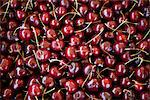 Cherries Stock Photo - Premium Rights-Managed, Artist: foodanddrinkphotos, Code: 824-03722095