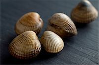 slate - Cockles on slate Stock Photo - Premium Rights-Managednull, Code: 824-03722691