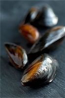 slate - Mussels on slate Stock Photo - Premium Rights-Managednull, Code: 824-03722693