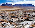 Landscape in Altiplano Stock Photo - Premium Rights-Managed, Artist: IIC, Code: 832-03724116