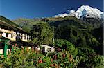 Annapurna South and Ghandruk Village, Gandaki Zone, Nepal Stock Photo - Premium Rights-Managed, Artist: Jochen Schlenker, Code: 700-03734644
