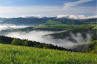 Morning Mist over Landscape, Voralpenblick, Waidhofen an der Ybbs, Mostviertel, Lower Austria, Austria Stock Photo - Premium Royalty-Freenull, Code: 600-03738933