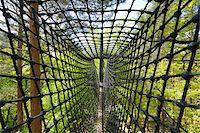 Canopy Walkway, Biosphaerenhaus, Fischbach bei Dahn, Pfaelzerwald, Rhineland-Palatinate, Germany Stock Photo - Premium Rights-Managednull, Code: 700-03739007