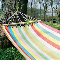 A hammock in a tree. Stock Photo - Premium Royalty-Freenull, Code: 6102-03748154