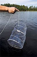 Crayfish fishing. Stock Photo - Premium Royalty-Freenull, Code: 6102-03750303