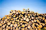 Timber. Stock Photo - Premium Royalty-Free, Artist: Robert Harding Images, Code: 6102-03750529