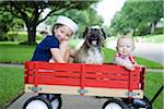 Little red wagon Stock Photo - Premium Royalty-Freenull, Code: 618-03757124