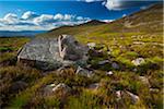 Lurchers Crag, Cairngorms National Park, Scottish Highlands, Scotland