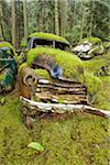Car Graveyard, Valdes Island, British Columbia, Canada Stock Photo - Premium Rights-Managed, Artist: J. A. Kraulis, Code: 700-03777061