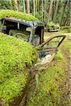 Car Graveyard, Valdes Island, British Columbia, Canada Stock Photo - Premium Rights-Managed, Artist: J. A. Kraulis, Code: 700-03777069