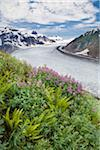 Salmon Glacier near Stewart, British Columbia, Canada Stock Photo - Premium Rights-Managed, Artist: J. A. Kraulis, Code: 700-03777164