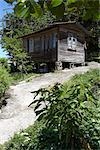 Grenada. Wooden shack precariously balanced on blocks by steep incline. Stock Photo - Premium Rights-Managed, Artist: Arcaid, Code: 845-03777415