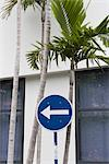 Madeira. Detail of white one way sign on blue background Stock Photo - Premium Rights-Managed, Artist: Arcaid, Code: 845-03777425