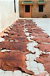 Dyed Leather Hides Drying, Medina, Marrakech, Morocco Stock Photo - Premium Rights-Managed, Artist: Nico Tondini, Code: 700-03778108