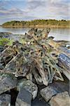 Gabriola Passage View From Drumbeg Provincial Park, Strait of Georgia, Gabriola Island, British Columbia, Canada Stock Photo - Premium Royalty-Free, Artist: J. A. Kraulis, Code: 600-03805362