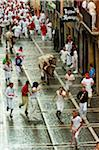 Running of the Bulls, Fiesta de San Fermin, Pamplona, Navarre, Spain Stock Photo - Premium Rights-Managed, Artist: Emanuele Ciccomartino, Code: 700-03805430