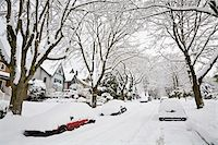 Fresh Snowfall, Dunbar-Southlands Neighbourhood, Vancouver, British Columbia, Canada Stock Photo - Premium Rights-Managednull, Code: 700-03805570