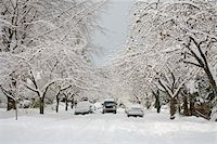 Truck Driving on Snow Covered Street, Dunbar-Southlands Neighbourhood, Vancouver, British Columbia, Canada Stock Photo - Premium Rights-Managednull, Code: 700-03805575