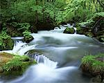 Oirase Stream, Aomori, Japan Stock Photo - Premium Rights-Managed, Artist: Aflo Relax, Code: 859-03806806