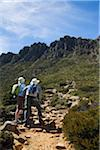 Australia, Tasmania, Cradle Mountain-Lake St Clair National Park.  Hikers on the summit trail, with the peaks of Cradle Mountain in the distance. Stock Photo - Premium Rights-Managed, Artist: AWL Images, Code: 862-03807273