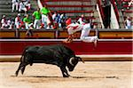 Matador and Bull in Bullfighting Ring, Fiesta de San Fermin, Pamplona, Navarre, Spain Stock Photo - Premium Rights-Managed, Artist: Emanuele Ciccomartino, Code: 700-03814416