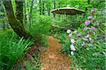 Gazebo and Path, Kitty Coleman Woodland Gardens, Courtenay, British Columbia, Canada