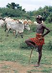 A Dassanech man stands on one leg in typical pose while looking after his familys cattle in the Omo Delta, one of the largest inland deltas in the world. The extensive scarification on his chest and shoulders denotes that he has killed an enemy.They practice animal husbandry and fishing as well as agriculture. Stock Photo - Premium Rights-Managed, Artist: AWL Images, Code: 862-03820346