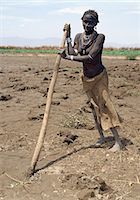 plow - An old Dassanech woman prepares her fields beside the Omo River with a digging stick in readiness to plant sorghum. This crude form of  agricultural implement is in common use in this remote part of Ethiopia. Stock Photo - Premium Rights-Managednull, Code: 862-03820348