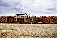 Forest industry, timber on a log rafft. Stock Photo - Premium Royalty-Freenull, Code: 6102-03826867
